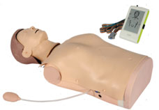 Advanced Half-Body CPR Training Manikin with Monitor & Voice Guided
